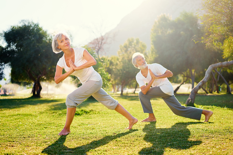 An elderly couple that is doing yoga together out in the sunshine.