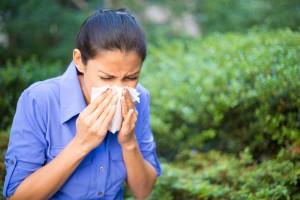 seasonal sinus problems